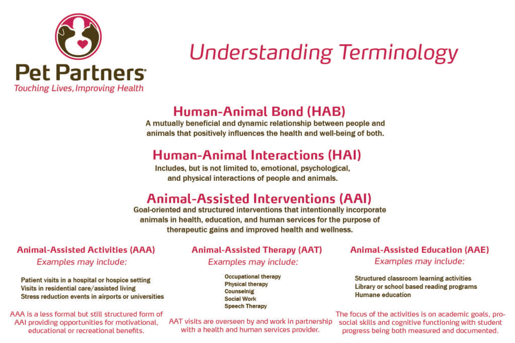 social work and animal assisted intervention Companion animals and other animal-assisted interventions) the asu school of social work and animals and society trained in treating animal.