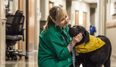 Therapy animal visits benefit not only the patients at facilities but also the healthcare professionals