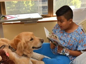 Pet-Partners-Therapy-Dog-Reading-Boy-1002x1024-1436824048-1-294x300-min[1]