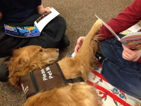 Read With Me | Pet Partners