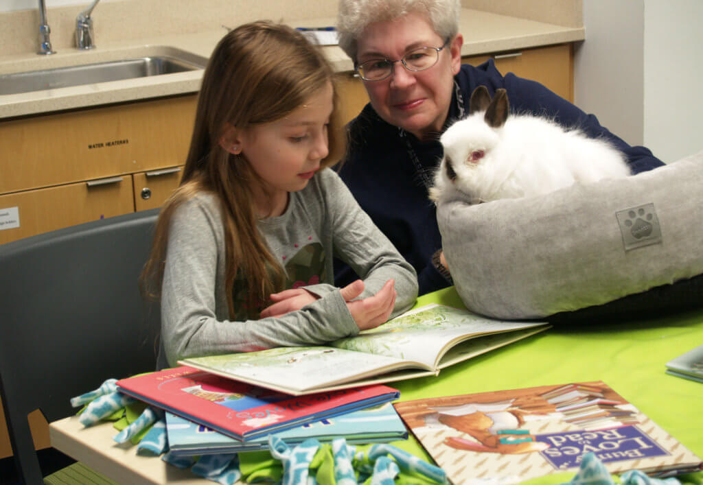 Pet Partners therapy rabbit with child and handler