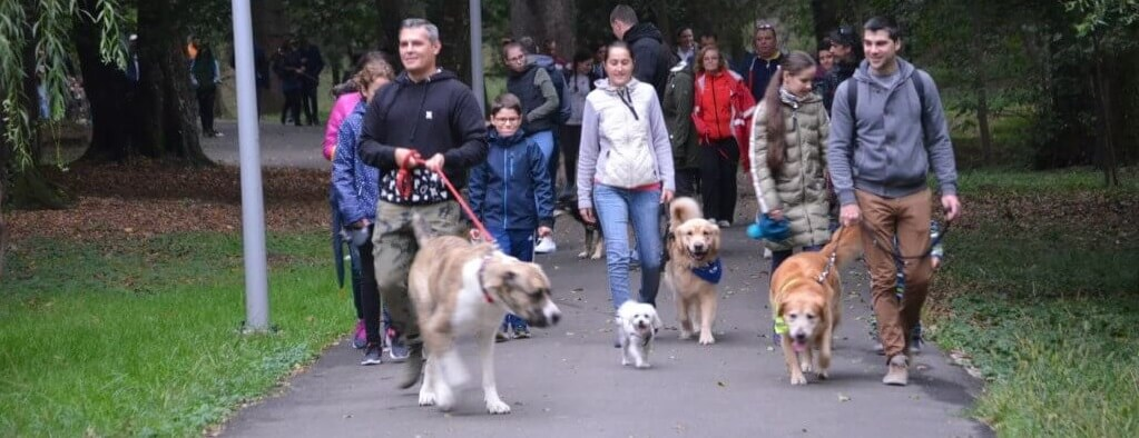 Pet Partners teams in Romania hold a Walk With Me event