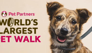World's Largest Pet Walk