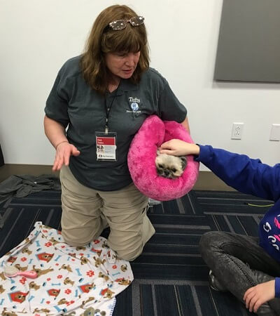 "Pet Partners handler Deb Gibbs holding her shih tzu Boo in a plush pink bed ""burrito"" while a person pets Boo"