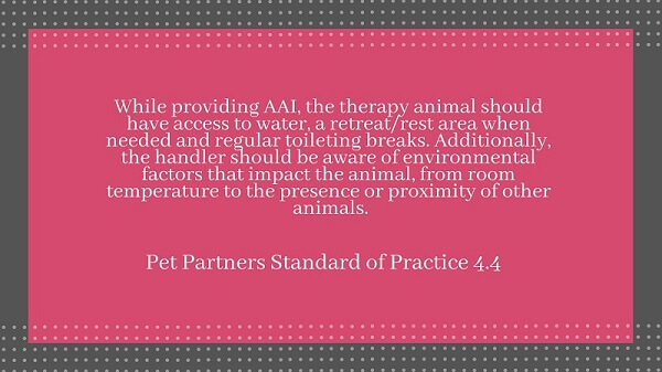 Screen shot of quoted text: While providing AAI, the therapy animal should have access to water, a retreat/rest area when needed, and regular toileting breaks. Additionally, the handler should be aware of environmental factors that impact the animal, from room temperature to the presence or proximity of other animals. --Pet Partners Standard of Practice 4.4