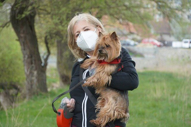 A woman wearing a mask and holding a fluffy terrier-type dog that is on a leash