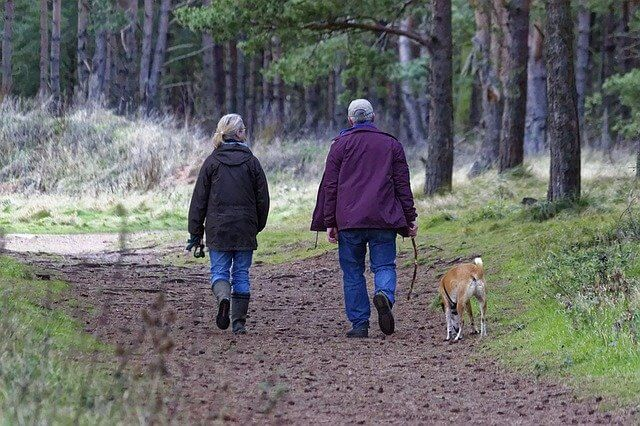 Two people, who look like they could be seniors, walking on a forest path with a medium-sized mixed-breed dog. Image by Kevin Phillips from Pixabay