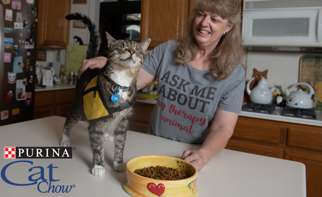Purina Cat Chow | Tommy the Cat