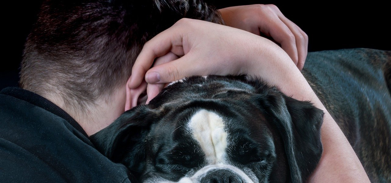 A closeup of a person and their hands hugging a boxer; the feeling is one of sadness and comfort. Photo by Myriams Fotos from Pixabay.