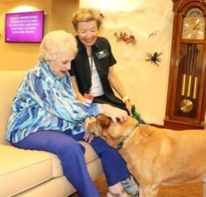 A senior woman sitting on a couch pets a therapy dog while the handler watches