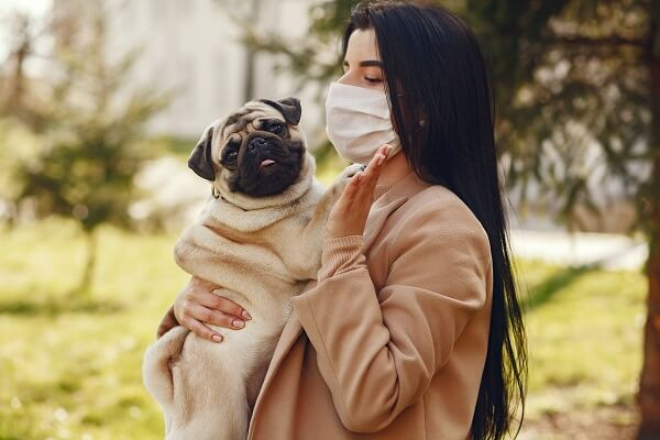 A woman wearing a mask and holding a pug. Photo by Gustavo Fring from Pexels