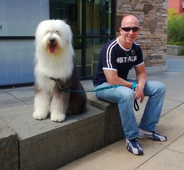 An old English sheepdog and a man sitting on a step outside a building