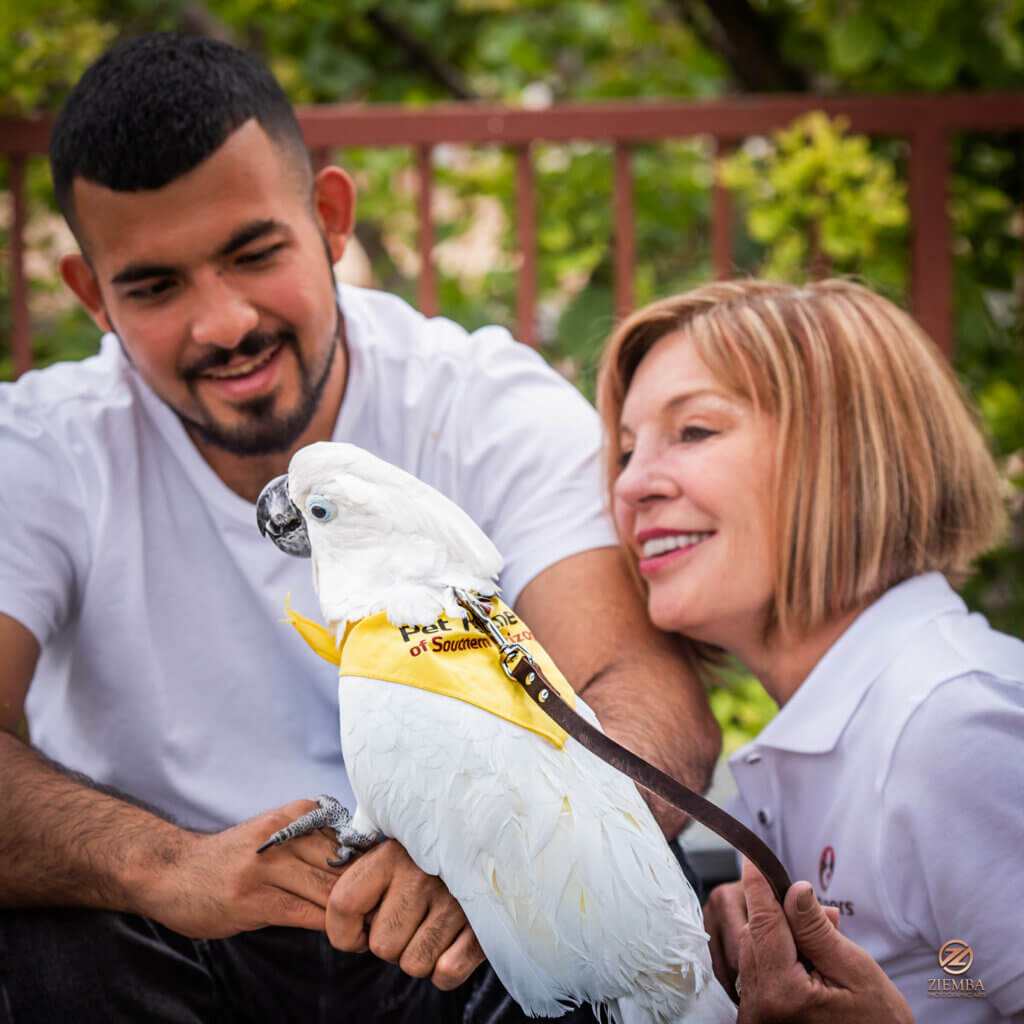 A therapy bird team visiting with a young man