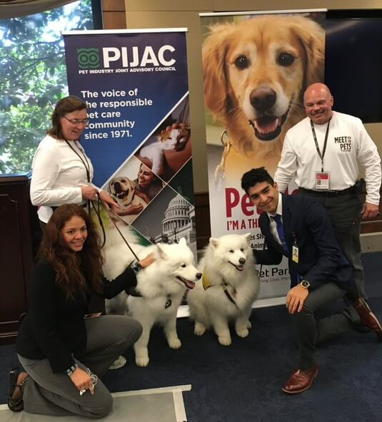 Two therapy handlers with their samoyed therapy dogs pose with two Congressional staffers at a Meet the Pets event