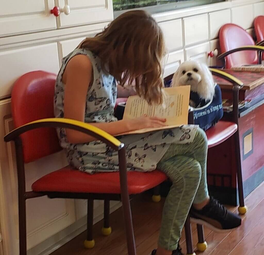A young person reads a book to a Maltese therapy dog sitting beside them