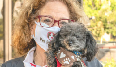 A masked therapy dog handler holding up her small therapy poodle