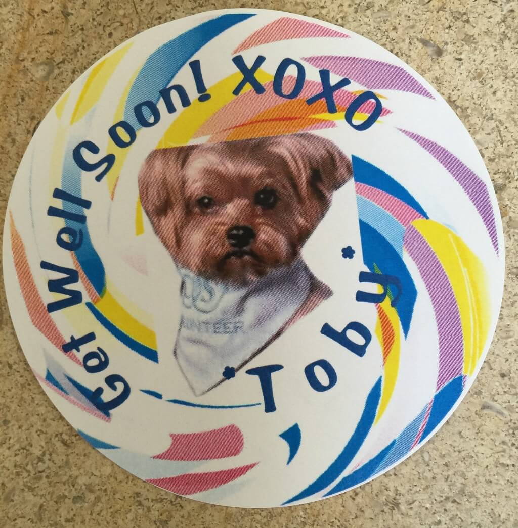 """A sticker with a photo of a therapy dog and text reading """"Get Well Soon! Toby"""""""