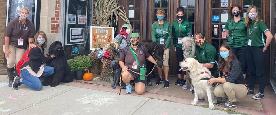 A group of walkers featuring dogs and mini horses participates in the World's Largest Pet Walk
